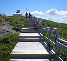 Climb the Stairs to Cape Spear by Oil Water Artt