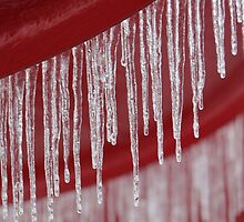 Icicles on Red Umbrella, Atlanta Georgia, USA by Gregory L. Nance