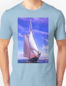 Gathering Wind T-Shirt