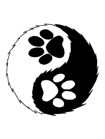 furry yin yang  by yiffy-hustler