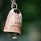 Goat bell by Liza Kirwan