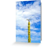Brown Spotted Yellow Wing on Great Mullein Greeting Card