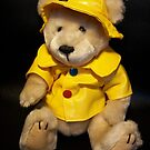 Rainy Day Bear by ArtBee