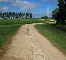 Country Driveway by rhamm