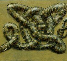 Celtic Tiger by SnakeArtist