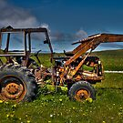 Tractor on green field by Gabor Pozsgai