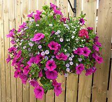 Basket of beauty by Fara