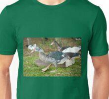 Young Muscovy Duck birds  Unisex T-Shirt