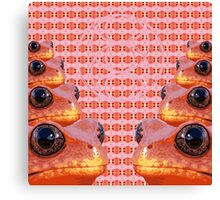 Sacred Geometry Froggy Canvas Print