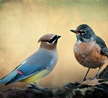 Said the waxwing to the robin . . .  by Bonnie T.  Barry
