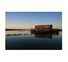 okarito lagoon  south westland  nz Art Print