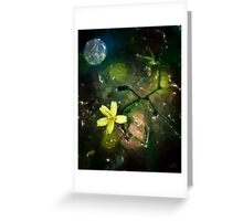Flower in the Moonlight Greeting Card