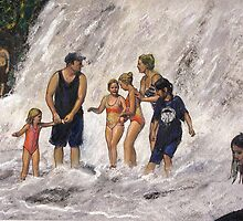 Willow River Falls by Randy Sprout