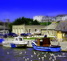 Bude Harbour by Charmiene Maxwell-batten