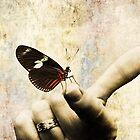 A Butterfly is Born by Marcia Rubin