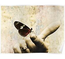 A Butterfly is Born Poster