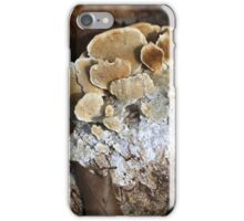 Forest Profiles 1 iPhone Case/Skin