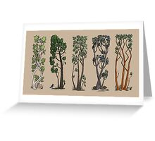 Five Trees/Summer Greeting Card