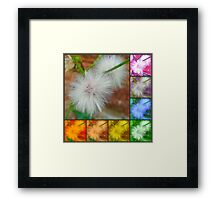 Weed'on't Know Everything Framed Print
