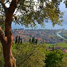 Lake Garda, Italy by Stephen Fry