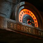 SERVICE ELEVATOR by Hope A. Burger