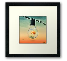 GOLD FISH  Framed Print