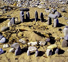 Circle of Stones by Charmiene Maxwell-batten