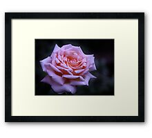 """She's beautiful and therefore to be woo'd"" William Shakespeare Framed Print"