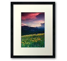 Alpine Sunflower Meadows Framed Print