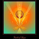 FIELD OF HOPE by jewd barclay