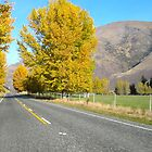 Queenstown Road by Carolina Couto