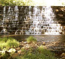 Hidden Falls by Mandi  Ruch
