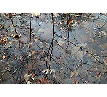 Wetland Reflections 30 Photographic Print