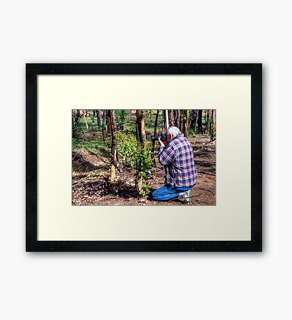 Whats he looking at? Framed Print