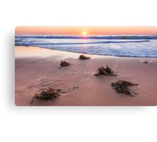 Sunrise Warriewood Beach Canvas Print