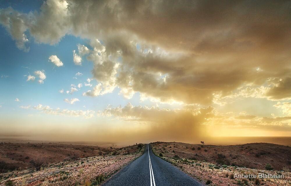 Dust Storm Mundi Mundi Plains by Annette Blattman