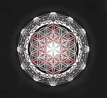 Flower of Life & Metatrons Cube by DrSoed
