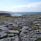 The Burren, Co. Clare, Ireland by robspan