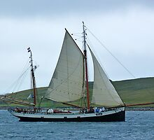 Tall Ships Race 2011 by Lynn Bolt