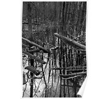 Wetland Reflections 47 BW Poster