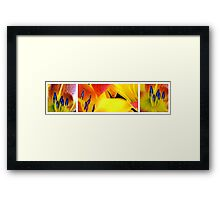 Lily Light Three... Framed Print