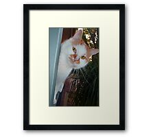"""KIYA""  ...Peek - A - Boo... Framed Print"