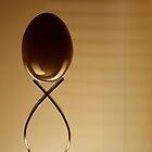 The Balancing Act....... by AroonKalandy