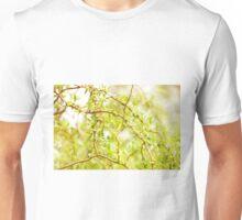 Willow Salix Alba tree detail Unisex T-Shirt