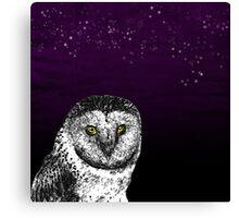 Birds Of Prey Barn Owl  Canvas Print
