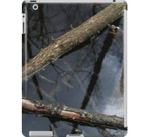 Wetland Triangle iPad Case/Skin