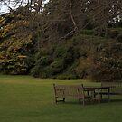 Mansion Gardens ~ Werribee Park, Victoria by Bree Lucas