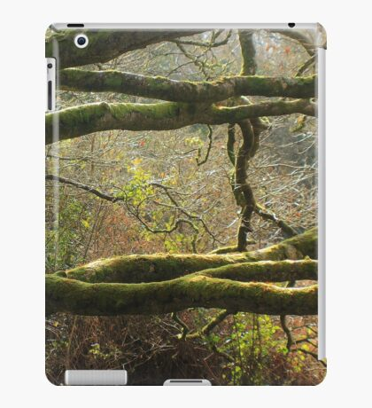 Enchanted Cong Abbey Irish Forest iPad Case/Skin