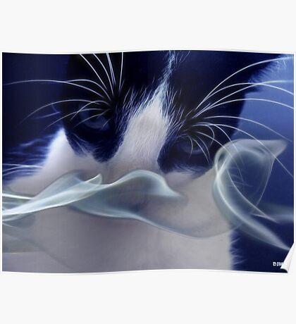 A Cats Trip Poster