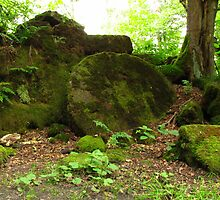 The Woodland Millstone by wiggyofipswich